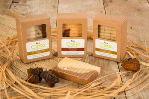 Chaga Soap with Birch Tree Leaves